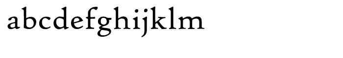 Hightower Text Roman MST Font LOWERCASE