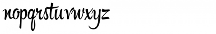 Hipster Script Pro Font LOWERCASE