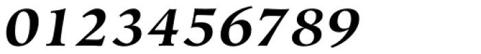 Hiroshige Std Bold Italic Font OTHER CHARS