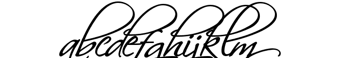 HL Scriptina Medium Font LOWERCASE