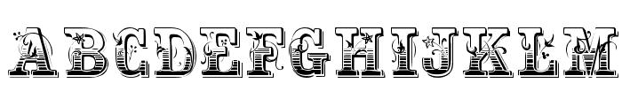 Holtzschue Plain Font UPPERCASE