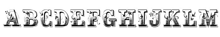 Holtzschue Regular Font UPPERCASE