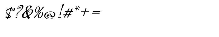 Hoofer Brush Spiral Oblique Font OTHER CHARS
