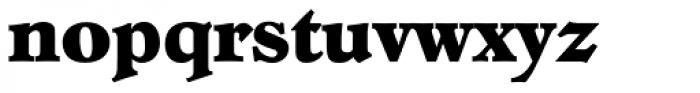 Hoboken Serial ExtraBold Font LOWERCASE