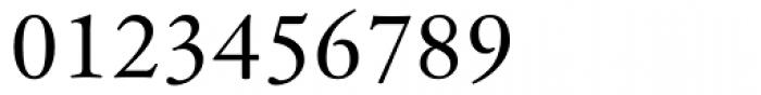 Hoefler Text Font OTHER CHARS