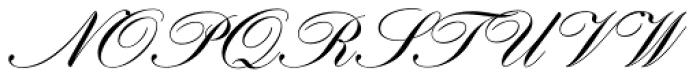 Hogarth Script D Font UPPERCASE