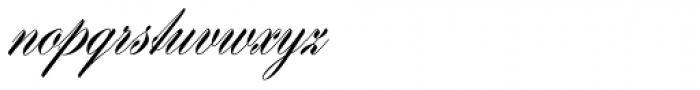 Hogarth Script D Font LOWERCASE