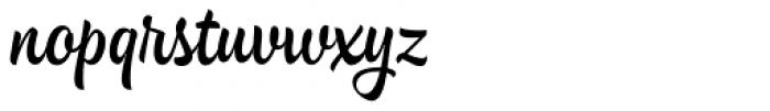 Hollie Script Pro Font LOWERCASE