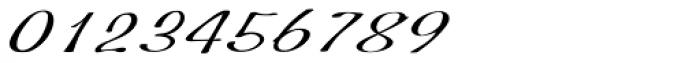 Hoof Brush Swing Font OTHER CHARS