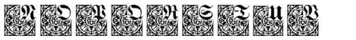 Hostetler Kapitalen 2 Font UPPERCASE