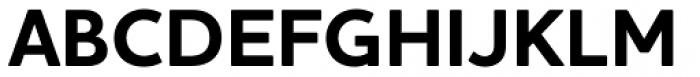 Houschka Alt Pro Bold Font UPPERCASE