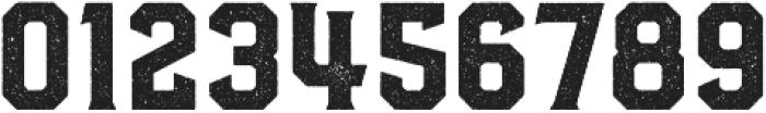 Hudson NY Serif Press otf (400) Font OTHER CHARS