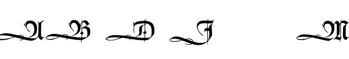 HumboldtFrakturInitialen Font LOWERCASE