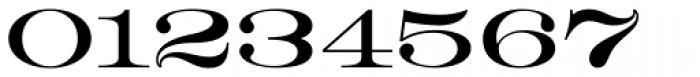 HWT Roman Extended Lightface Font OTHER CHARS