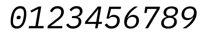 iA Writer Duospace RegularItalic Font OTHER CHARS
