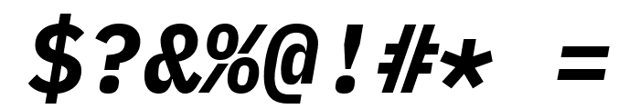 IBM Plex Mono Bold Italic Font OTHER CHARS