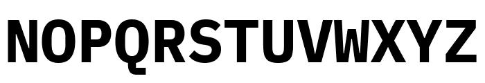 IBM Plex Mono Bold Font UPPERCASE