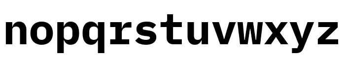 IBM Plex Mono Bold Font LOWERCASE