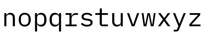 IBM Plex Mono Font LOWERCASE