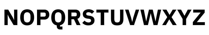 IBM Plex Sans Bold Font UPPERCASE