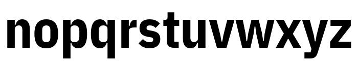 IBM Plex Sans Condensed Bold Font LOWERCASE