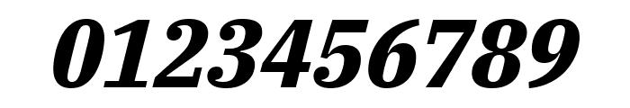 IBM Plex Serif Bold Italic Font OTHER CHARS