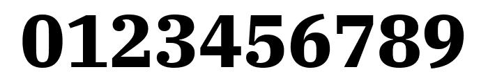 IBM Plex Serif Bold Font OTHER CHARS