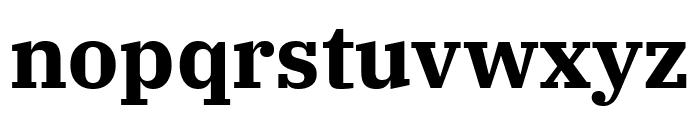 IBM Plex Serif Bold Font LOWERCASE