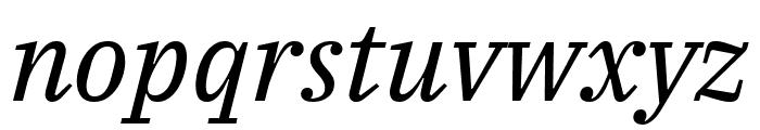IBM Plex Serif Italic Font LOWERCASE