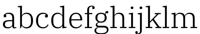 IBM Plex Serif Light Font LOWERCASE