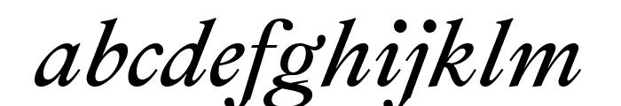 Ibarra Real Nova Italic Font LOWERCASE