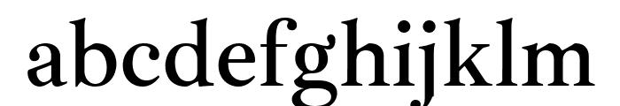Ibarra Real Nova SemiBold Font LOWERCASE