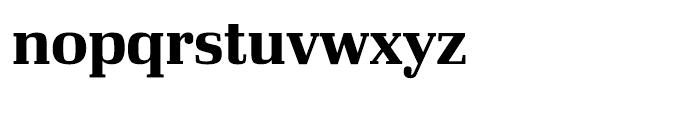 Ibis Display Bold Font LOWERCASE