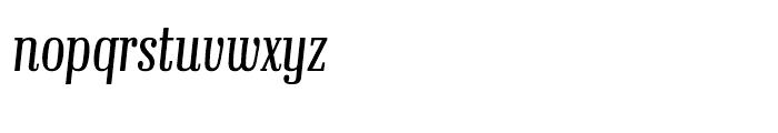 Ibis Display Compressed Extra Light Italic Font LOWERCASE