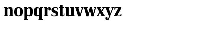 Ibis Display Condensed Bold Font LOWERCASE