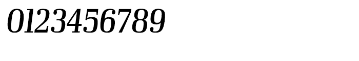 Ibis Display Condensed Regular Italic Font OTHER CHARS