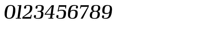 Ibis Display Regular Italic Font OTHER CHARS