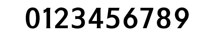 IkariusADFNo2Std-Bold Font OTHER CHARS