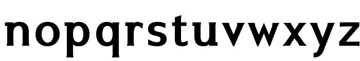 IkariusADFNo2Std-Bold Font LOWERCASE