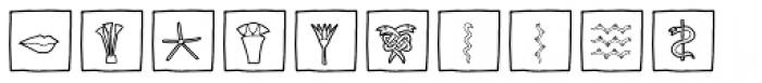 Imagination EF Flowers Box Font UPPERCASE