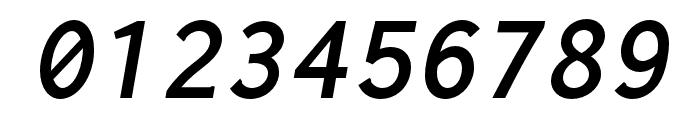 Inconsolata LGC Markup Bold Italic Font OTHER CHARS