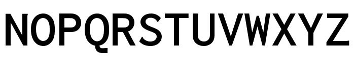 Inconsolata LGC Markup Bold Font UPPERCASE