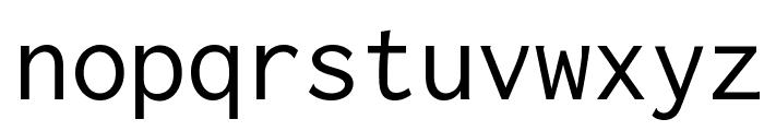 Inconsolata Regular Font LOWERCASE