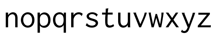 Inconsolata Font LOWERCASE