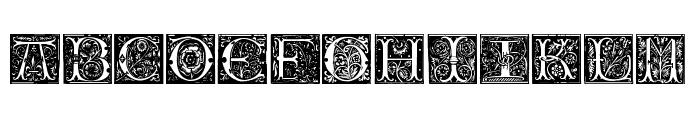 Initials TFB Font UPPERCASE