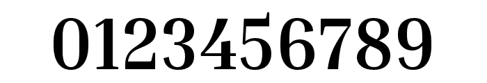 Inria Serif Bold Font OTHER CHARS