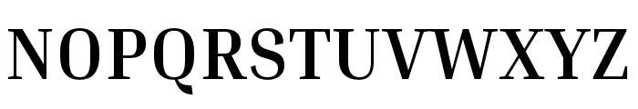 Inria Serif Bold Font UPPERCASE
