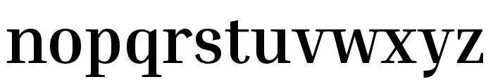Inria Serif Bold Font LOWERCASE