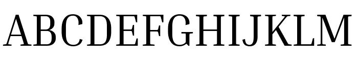 Inria Serif Regular Font UPPERCASE