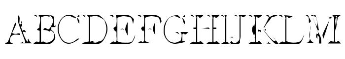 Interim SmallCaps Font UPPERCASE